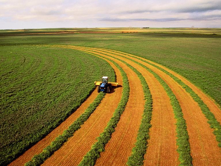 maszyna rolnicza podczas pracy